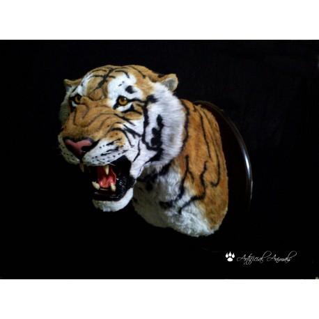 Tigre pecho con escudo de madera