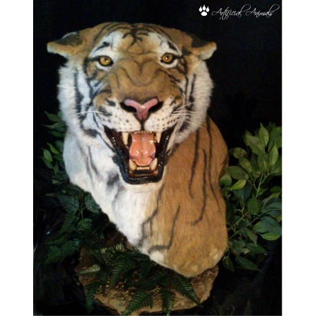 Tigre Pedestal