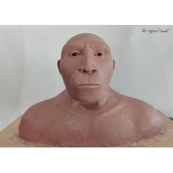 Proximamente: Homo heildelbergensis