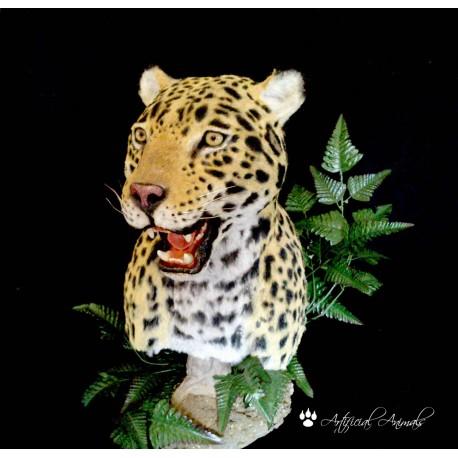 Jaguar Artificial pedestal