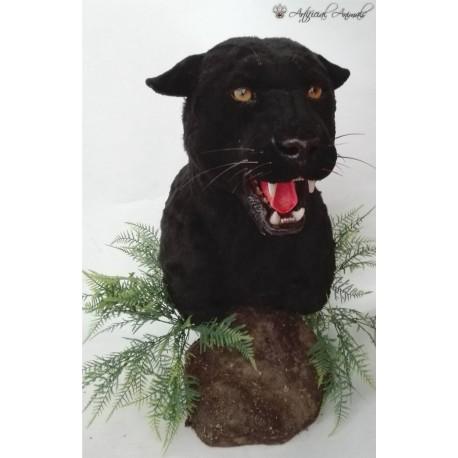 Pantera negra pedestal taxidermia artificial
