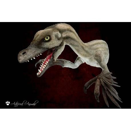 Velociraptor de pecho 100% artificial