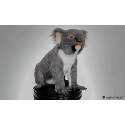Réplica de Koala