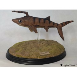 Falcatus tiburón