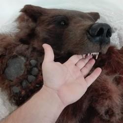 Piel de oso sintética