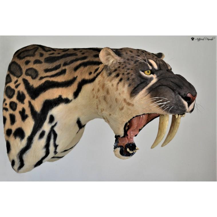 Smilodon populator , tigre dientes de sable