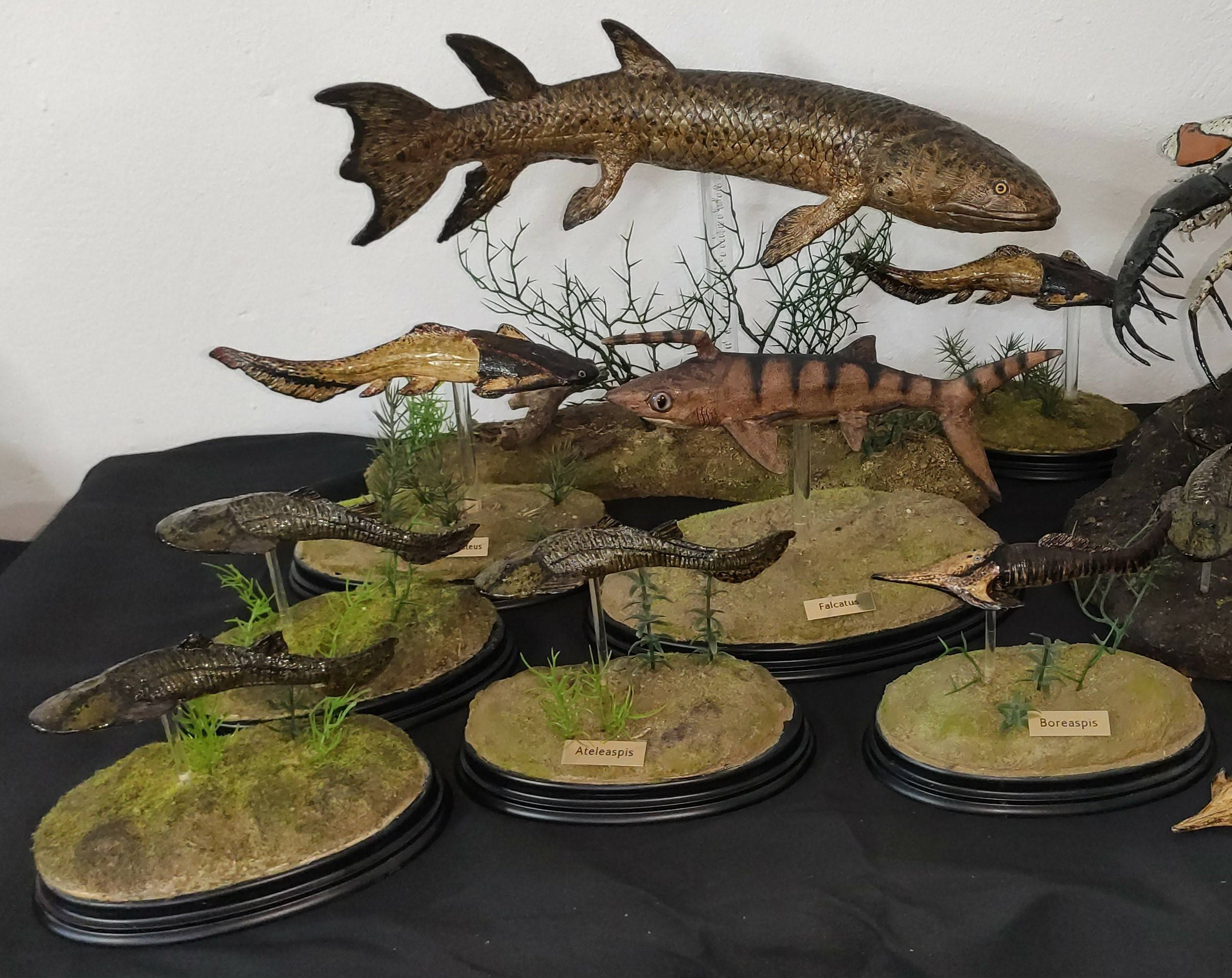 Fauna paleozoica